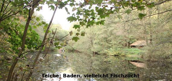 Teiche: Baden, vielleicht Fischzucht